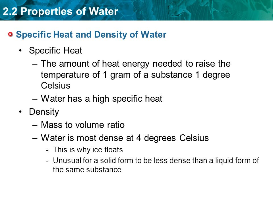 2.2 Properties of Water Specific Heat and Density of Water Specific Heat –The amount of heat energy needed to raise the temperature of 1 gram of a substance 1 degree Celsius –Water has a high specific heat Density –Mass to volume ratio –Water is most dense at 4 degrees Celsius -This is why ice floats -Unusual for a solid form to be less dense than a liquid form of the same substance