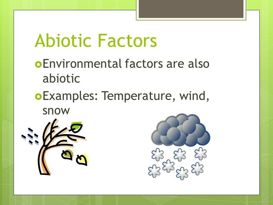 Abiotic vs biotic factors worksheet answers