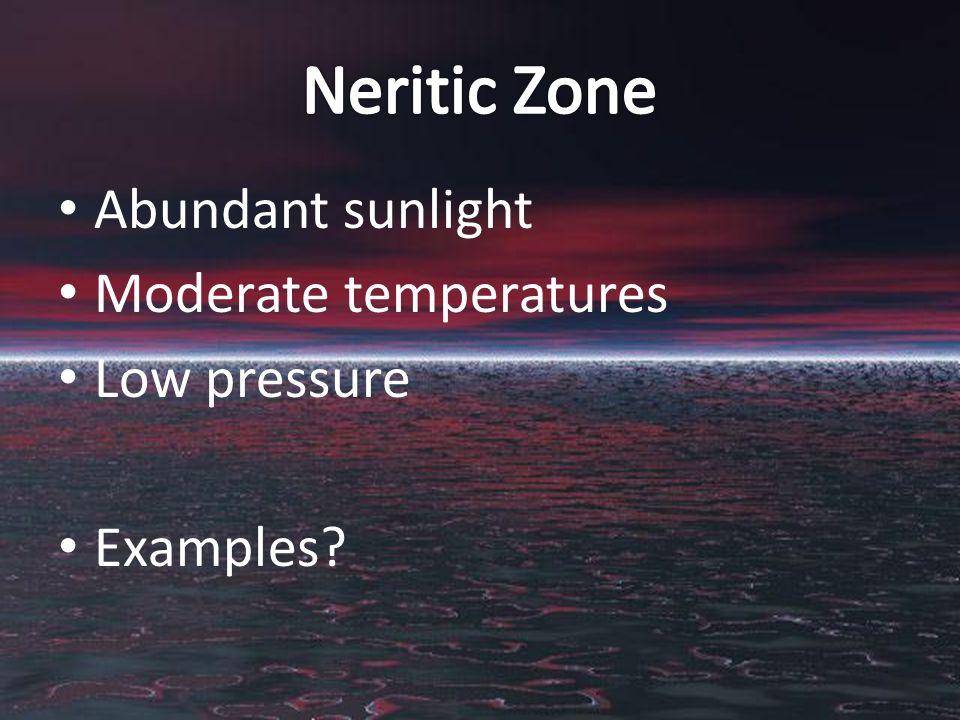 Abundant sunlight Moderate temperatures Low pressure Examples?