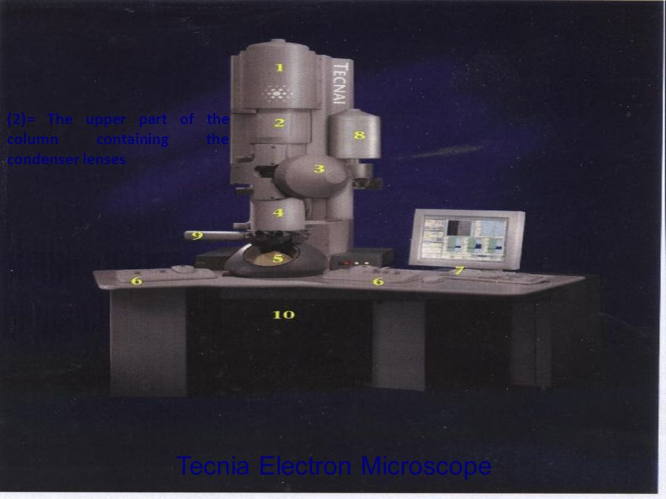 Tecnia Electron Microscope (2)= The upper part of the column containing the condenser lenses