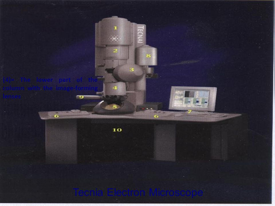 Tecnia Electron Microscope (4)= The lower part of the column with the image-forming lenses
