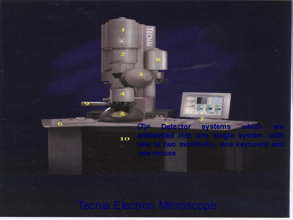 Tecnia Electron Microscope (7)= Detector systems which are embedded into one single system, with one or two monitor(s), one keyboard and one mouse