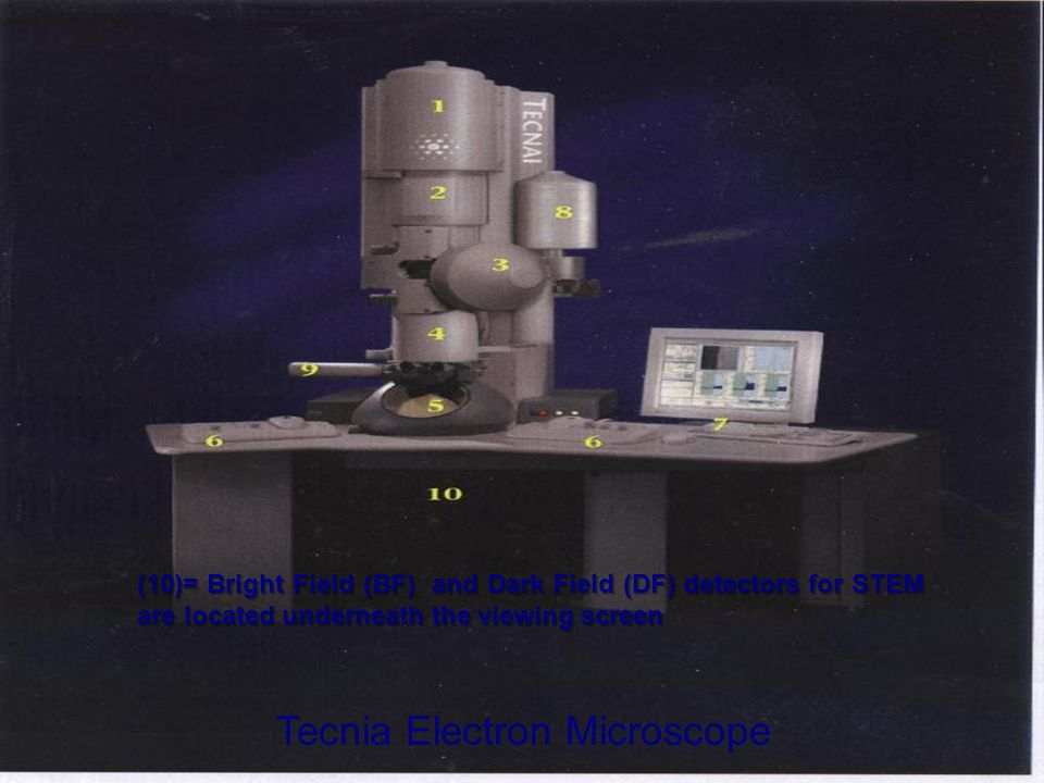 Tecnia Electron Microscope (10)= Bright Field (BF) and Dark Field (DF) detectors for STEM are located underneath the viewing screen