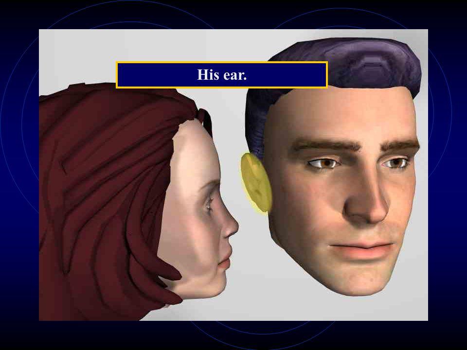 His ear.