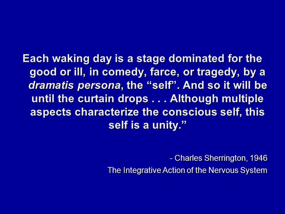Each waking day is a stage dominated for the good or ill, in comedy, farce, or tragedy, by a dramatis persona, the self .
