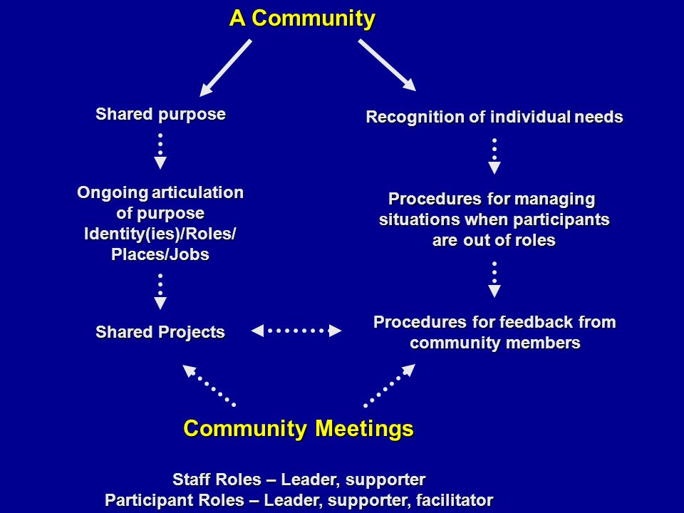 A Community Shared purpose Recognition of individual needs Ongoing articulation of purpose Identity(ies)/Roles/Places/Jobs Procedures for managing situations when participants are out of roles Shared Projects Procedures for feedback from community members Community Meetings Staff Roles – Leader, supporter Participant Roles – Leader, supporter, facilitator