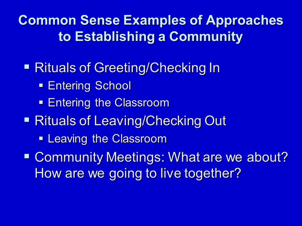 Common Sense Examples of Approaches to Establishing a Community  Rituals of Greeting/Checking In  Entering School  Entering the Classroom  Rituals of Leaving/Checking Out  Leaving the Classroom  Community Meetings: What are we about.