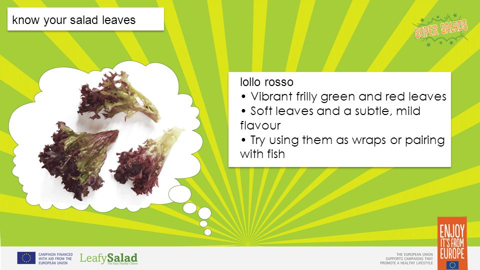 t t t t know your salad leaves lollo rosso Vibrant frilly green and red leaves Soft leaves and a subtle, mild flavour Try using them as wraps or pairing with fish