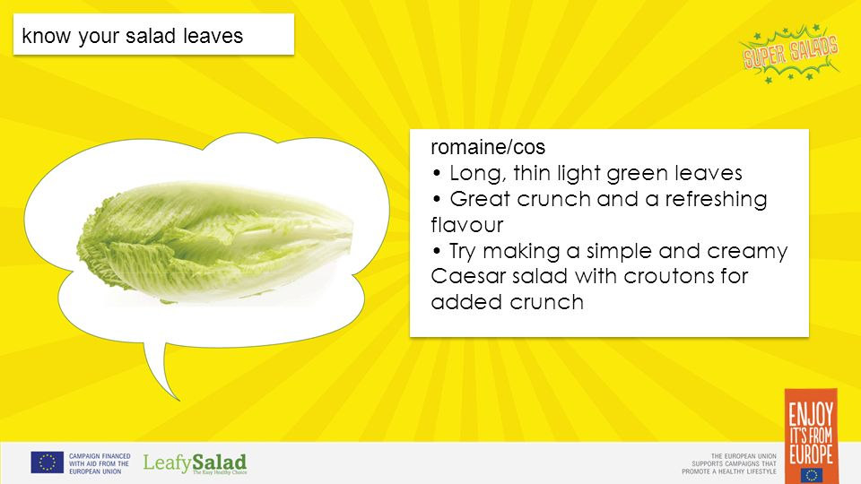 t t t t know your salad leaves romaine/cos Long, thin light green leaves Great crunch and a refreshing flavour Try making a simple and creamy Caesar salad with croutons for added crunch