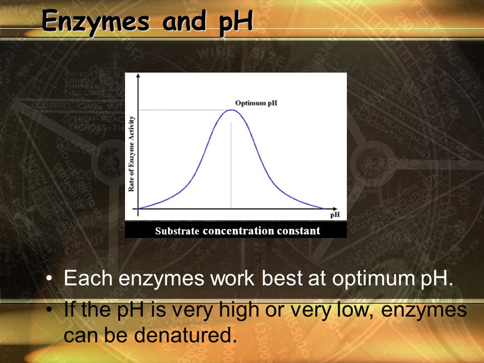 Enzymes and pH Each enzymes work best at optimum pH.