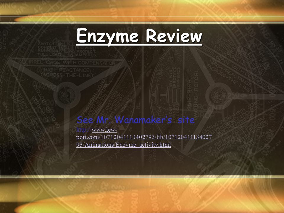 Enzyme Review See Mr.
