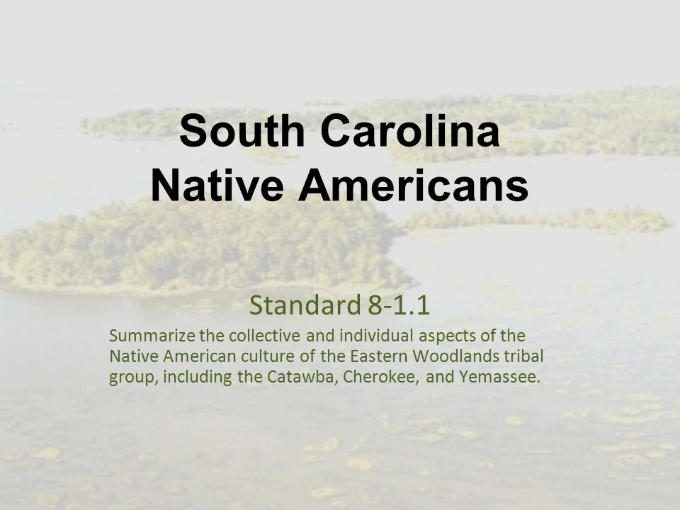 the native americans presentation