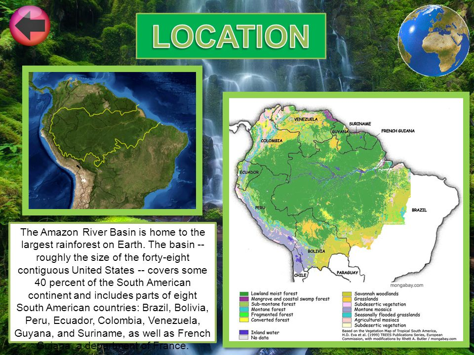 The Amazon River Basin Is Home To The Largest Rainforest On Earth - Amazon river location