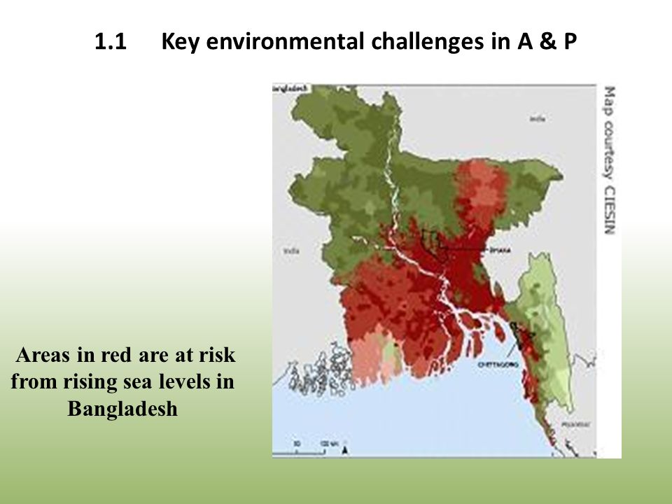 Areas in red are at risk from rising sea levels in Bangladesh 1.1Key environmental challenges in A & P