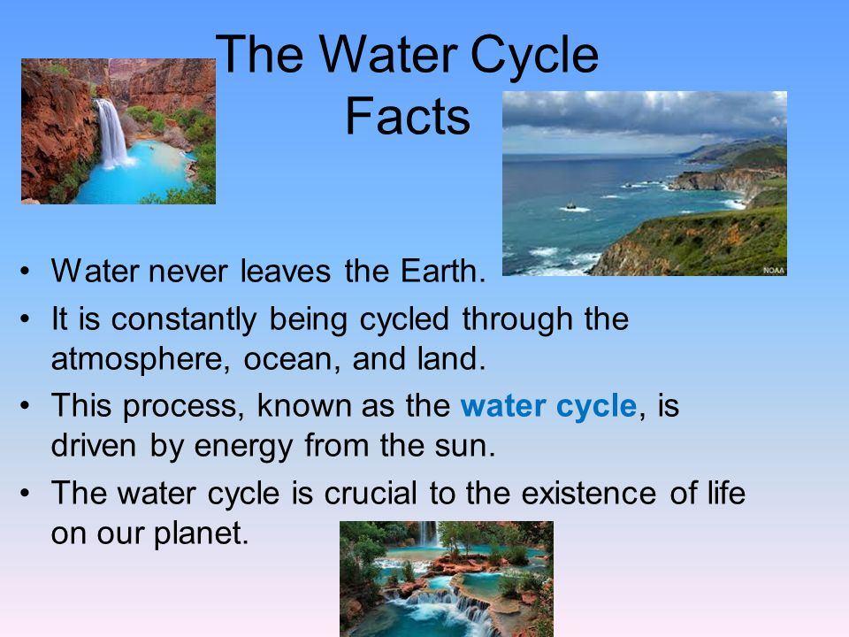 The Water Cycle 34
