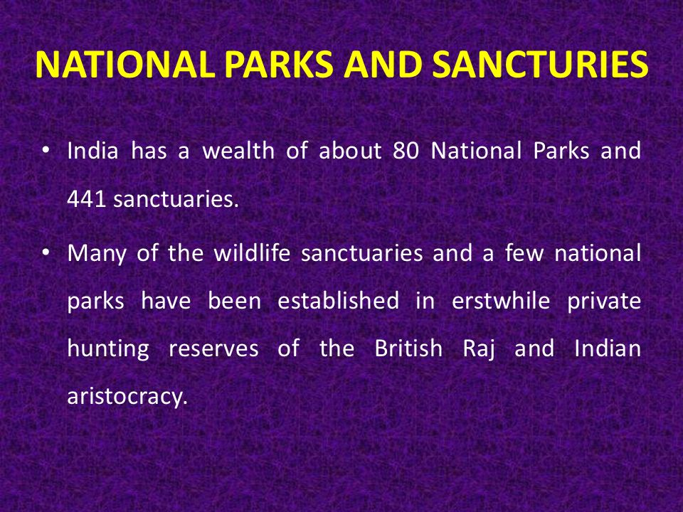 NATIONAL PARKS AND SANCTURIES India has a wealth of about 80 National Parks and 441 sanctuaries.