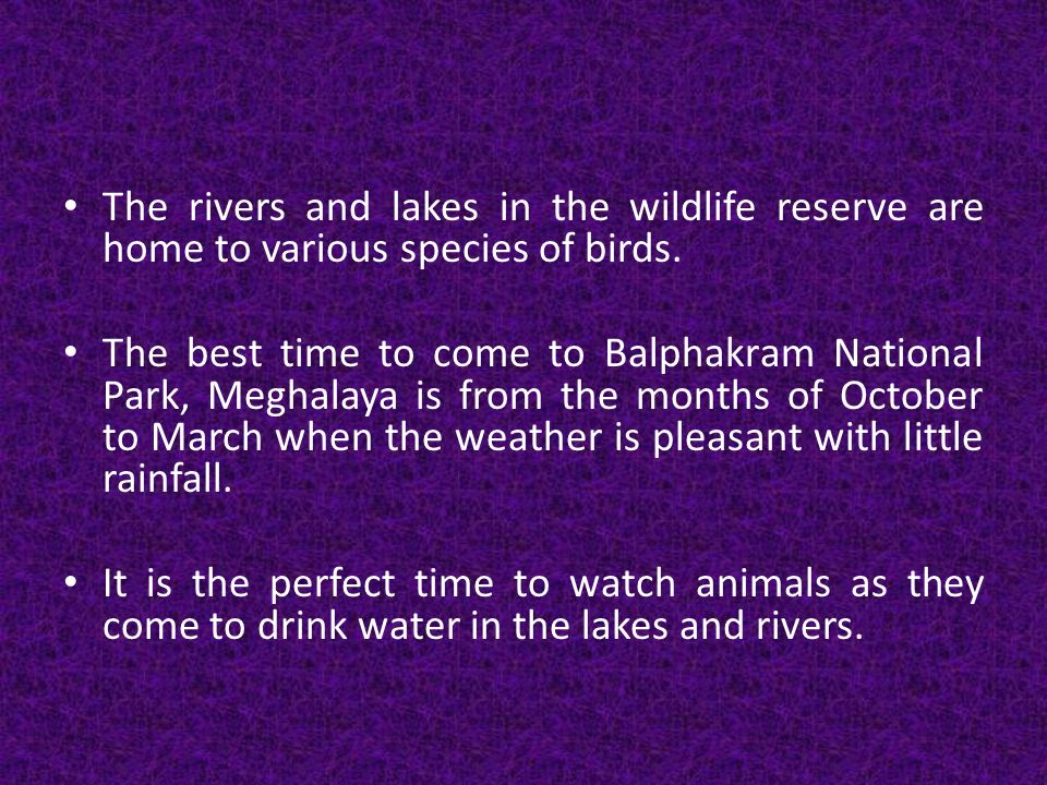 The rivers and lakes in the wildlife reserve are home to various species of birds.