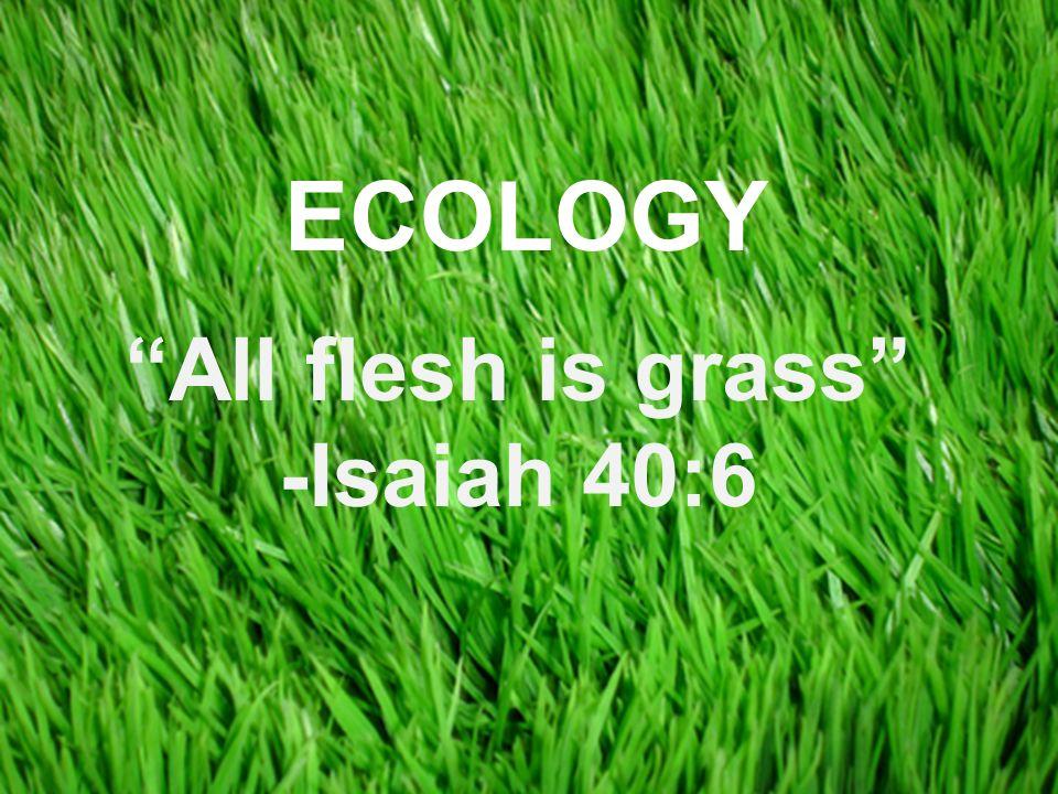 Copyright © 2008 Pearson Education, Inc., publishing as Pearson Benjamin Cummings All flesh is grass -Isaiah 40:6 ECOLOGY