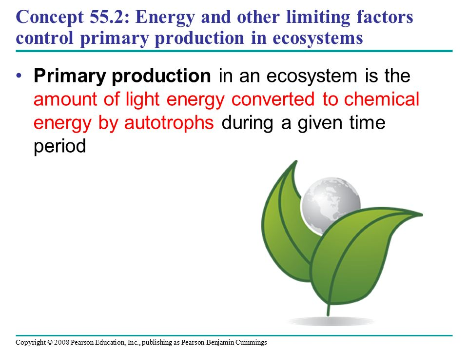 Copyright © 2008 Pearson Education, Inc., publishing as Pearson Benjamin Cummings Concept 55.2: Energy and other limiting factors control primary production in ecosystems Primary production in an ecosystem is the amount of light energy converted to chemical energy by autotrophs during a given time period