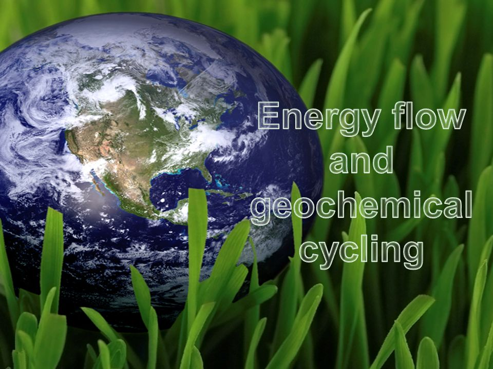 Copyright © 2008 Pearson Education, Inc., publishing as Pearson Benjamin Cummings Energy Flow and Geochemical Cycling in an Ecosystem