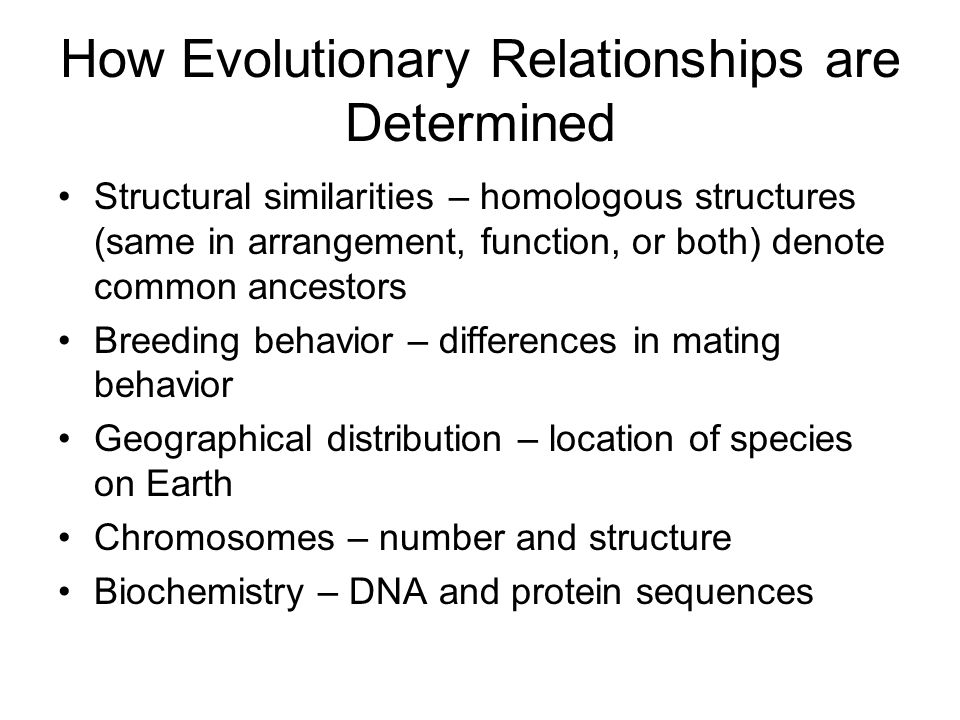 How Evolutionary Relationships are Determined Structural similarities – homologous structures (same in arrangement, function, or both) denote common ancestors Breeding behavior – differences in mating behavior Geographical distribution – location of species on Earth Chromosomes – number and structure Biochemistry – DNA and protein sequences