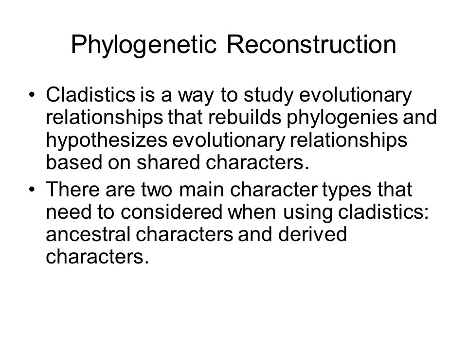 Phylogenetic Reconstruction Cladistics is a way to study evolutionary relationships that rebuilds phylogenies and hypothesizes evolutionary relationships based on shared characters.