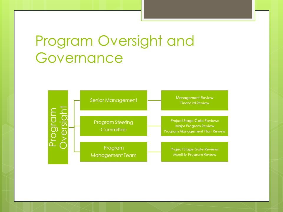 Implementing Program Management Standards At Duke Energy  Ppt