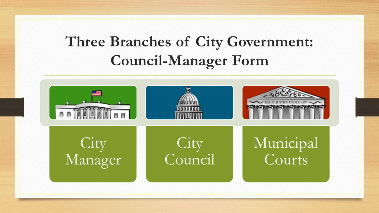 Local Government County and City. Georgia Performance Standard ...