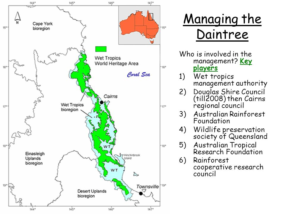 A bio diverse area under threat the daintree rainforest 17 managing gumiabroncs Gallery