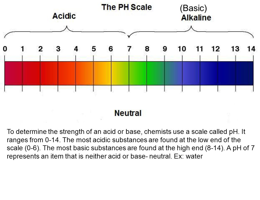 describe the properties of acids and bases? be able to read a ph ... for Ph Scale Acids And Bases  110yll