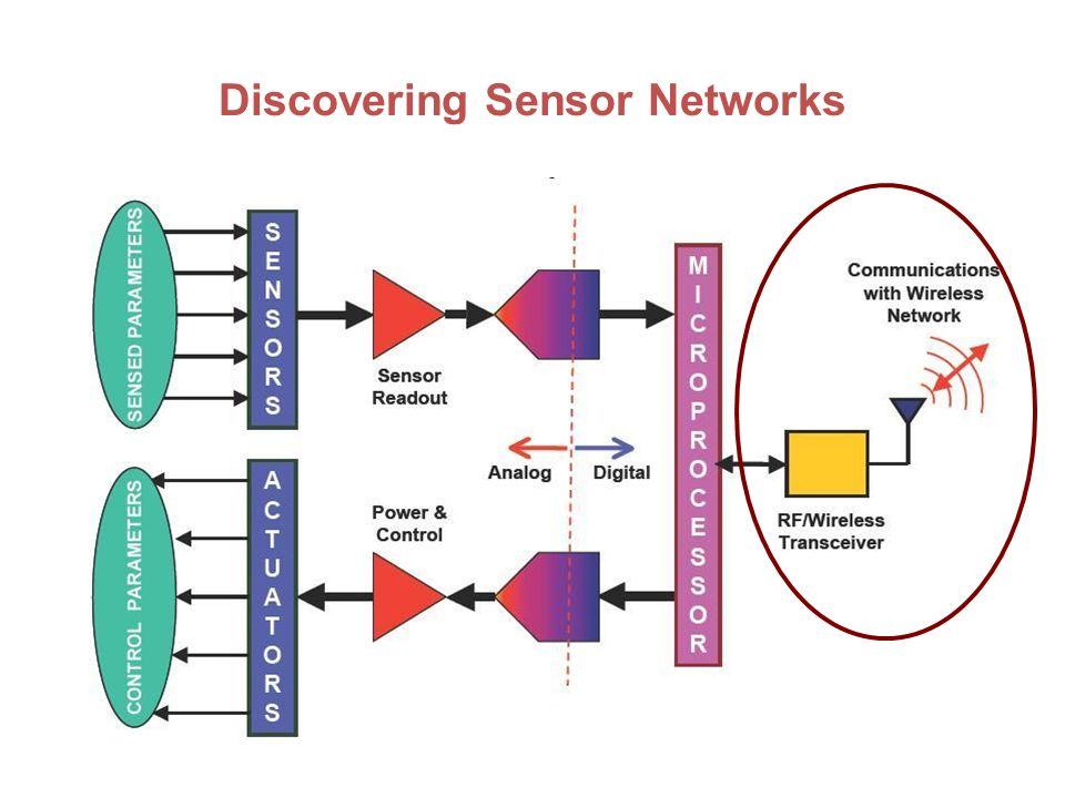 sensor networks [246 pages] wireless sensor network market report categorizes global market by offering (hardware, software, services), sensor type, connectivity type, end-user industry (building automation, wearable devices, healthcare, automotive & transportation, industrial), and region.