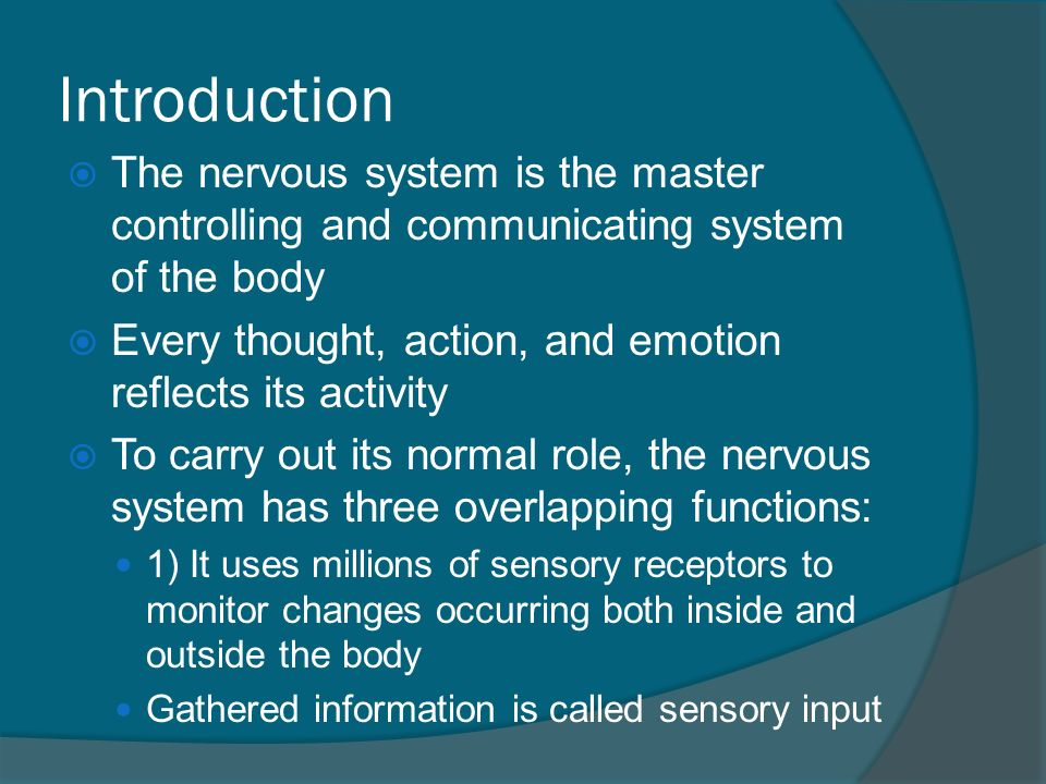 Anatomy & Physiology. Introduction  The nervous system is the ...