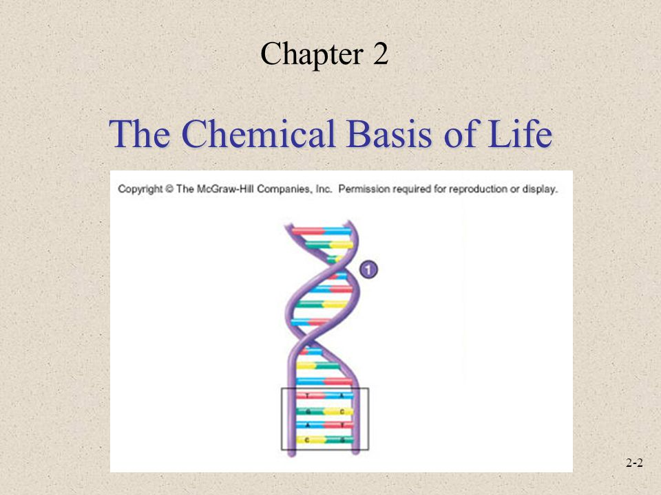 2-1 Anatomy and Physiology, Sixth Edition Rod R. Seeley Idaho State ...