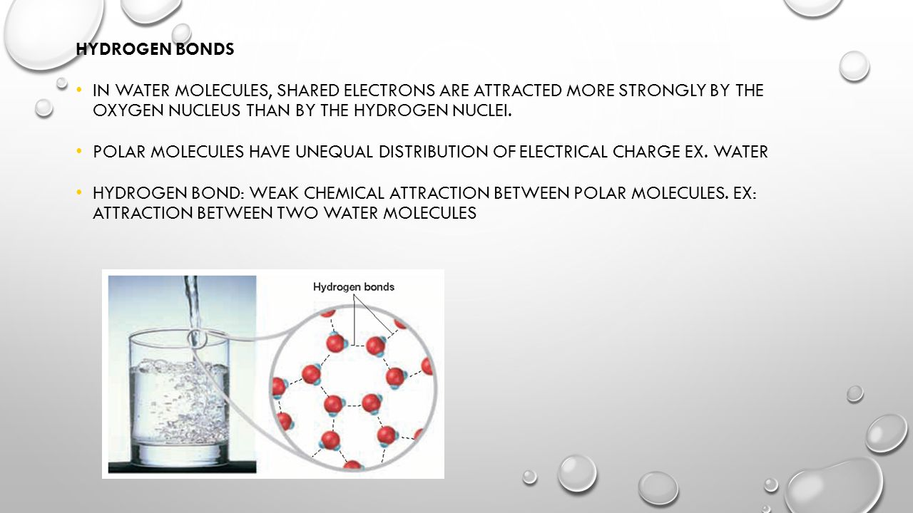 CHAPTER 2 CHEMISTRY OF LIFE ATOMS, MOLECULES, WATER AND ...
