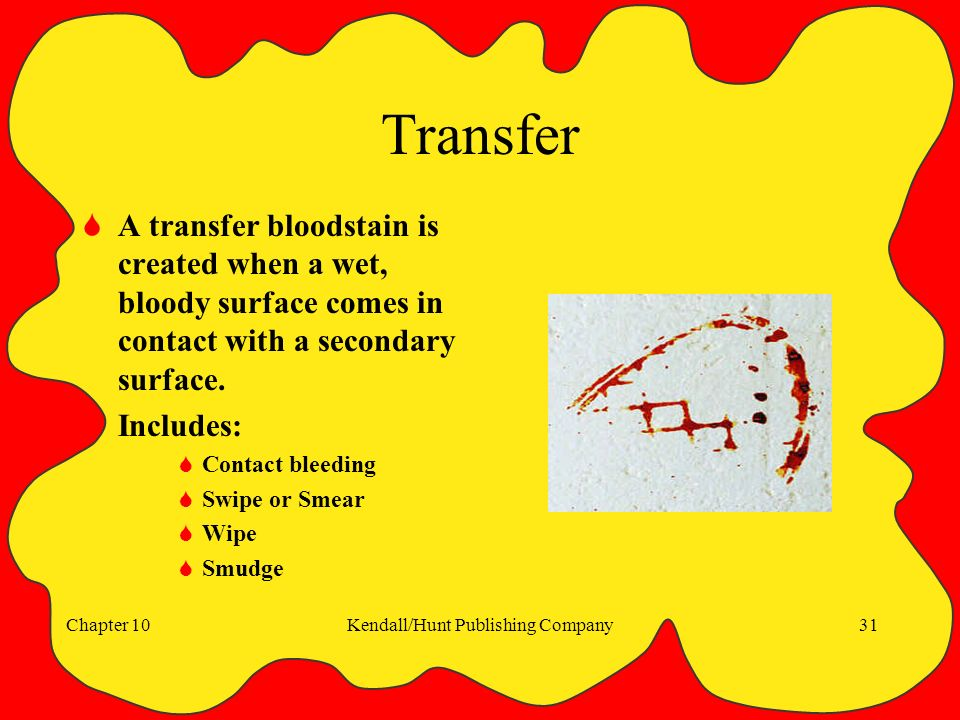 Chapter 10Kendall/Hunt Publishing Company31 Transfer  A transfer bloodstain is created when a wet, bloody surface comes in contact with a secondary surface.