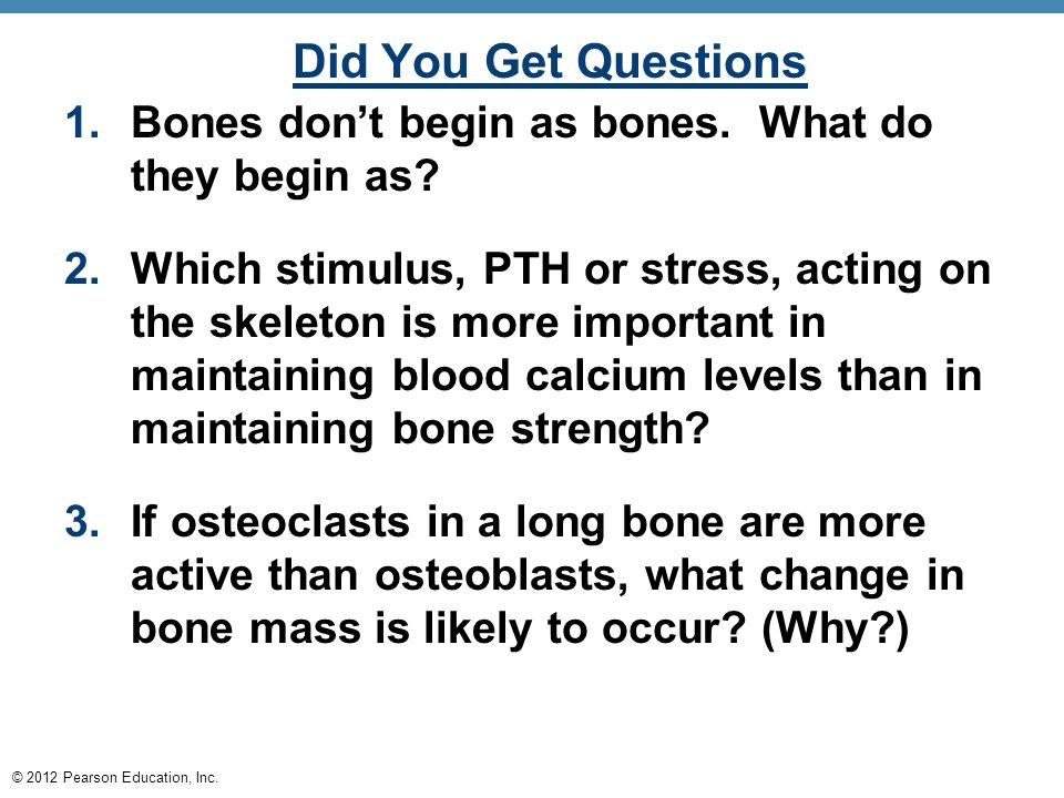 If osteoclasts are more active than osteoblasts bones will become