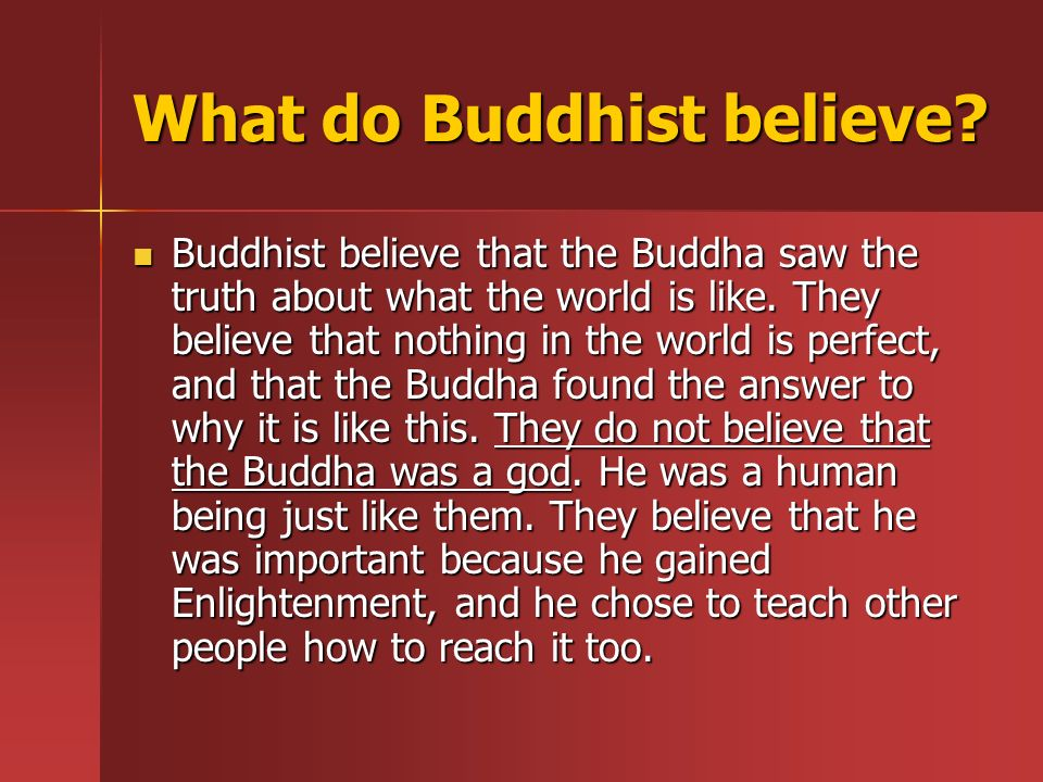 What do Buddhist believe.