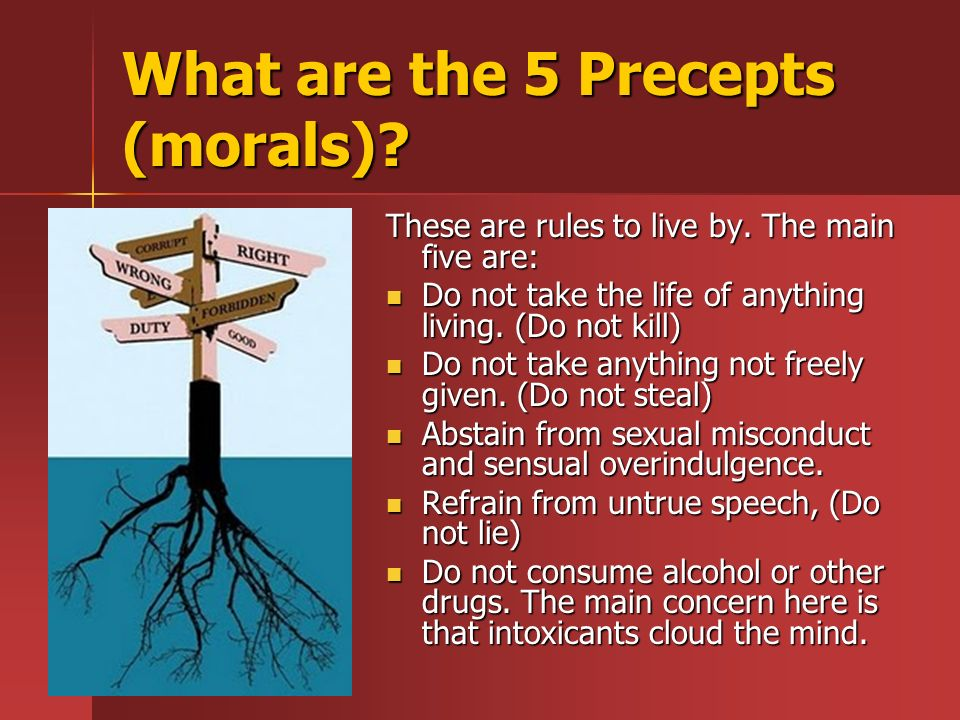 What are the 5 Precepts (morals). These are rules to live by.