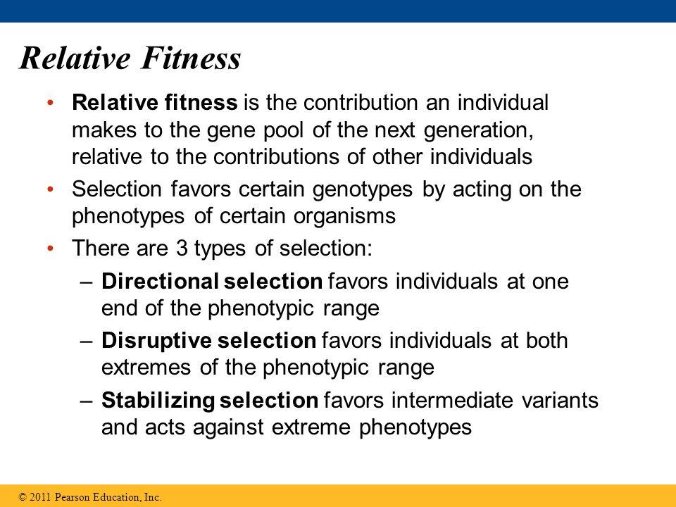 Relative Fitness Relative fitness is the contribution an individual makes to the gene pool of the next generation, relative to the contributions of other individuals Selection favors certain genotypes by acting on the phenotypes of certain organisms There are 3 types of selection: –Directional selection favors individuals at one end of the phenotypic range –Disruptive selection favors individuals at both extremes of the phenotypic range –Stabilizing selection favors intermediate variants and acts against extreme phenotypes © 2011 Pearson Education, Inc.
