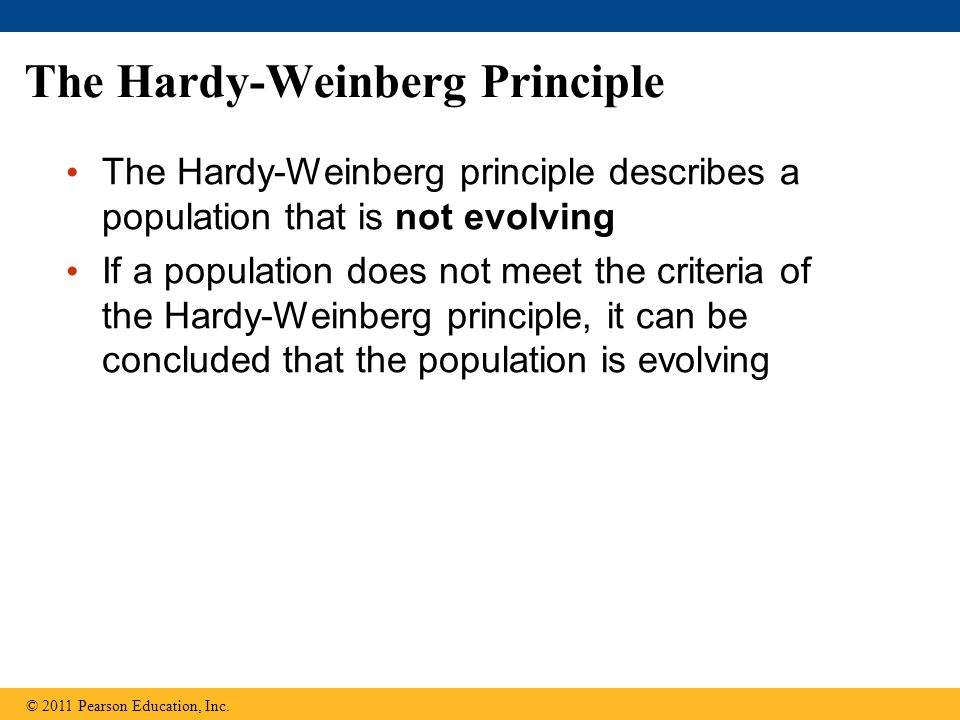 The Hardy-Weinberg Principle The Hardy-Weinberg principle describes a population that is not evolving If a population does not meet the criteria of the Hardy-Weinberg principle, it can be concluded that the population is evolving © 2011 Pearson Education, Inc.