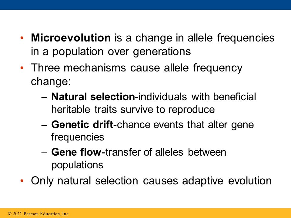 Microevolution is a change in allele frequencies in a population over generations Three mechanisms cause allele frequency change: –Natural selection-individuals with beneficial heritable traits survive to reproduce –Genetic drift-chance events that alter gene frequencies –Gene flow-transfer of alleles between populations Only natural selection causes adaptive evolution © 2011 Pearson Education, Inc.