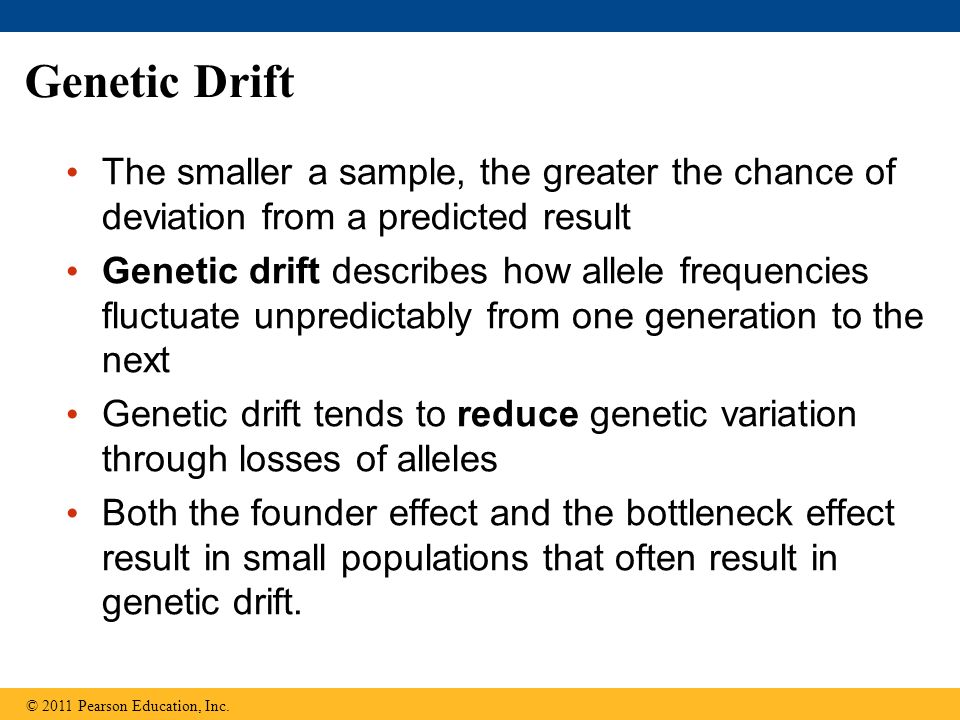 Genetic Drift The smaller a sample, the greater the chance of deviation from a predicted result Genetic drift describes how allele frequencies fluctuate unpredictably from one generation to the next Genetic drift tends to reduce genetic variation through losses of alleles Both the founder effect and the bottleneck effect result in small populations that often result in genetic drift.