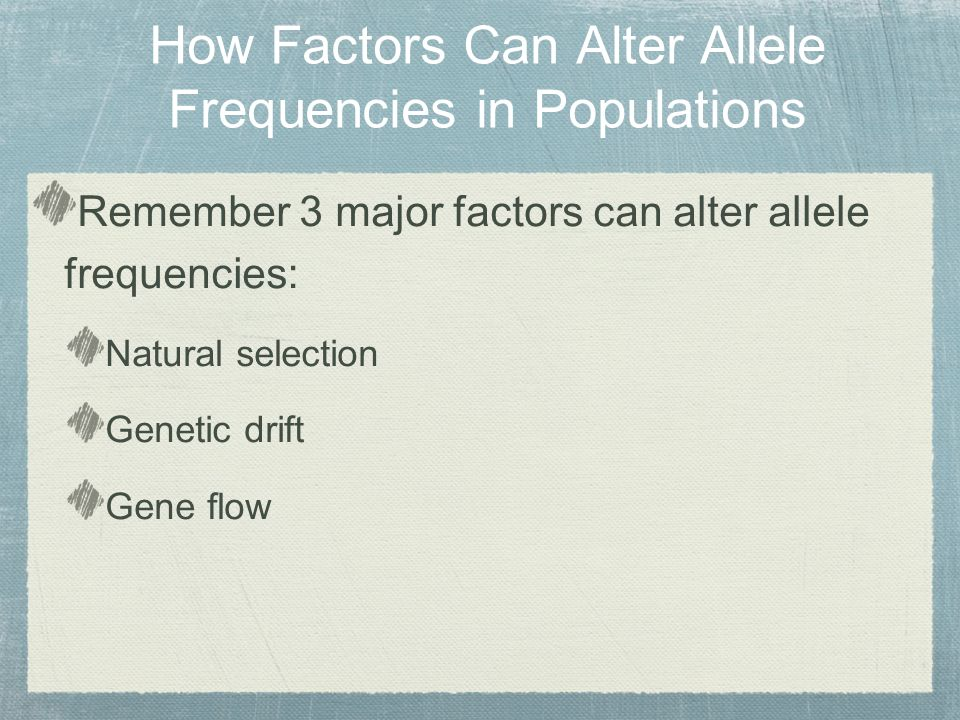Remember 3 major factors can alter allele frequencies: Natural selection Genetic drift Gene flow How Factors Can Alter Allele Frequencies in Populations
