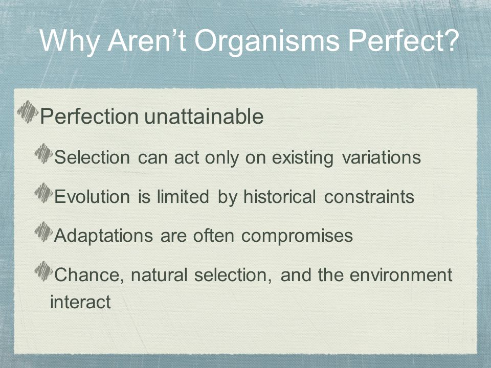 Perfection unattainable Selection can act only on existing variations Evolution is limited by historical constraints Adaptations are often compromises Chance, natural selection, and the environment interact Why Aren't Organisms Perfect