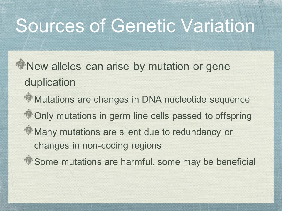 New alleles can arise by mutation or gene duplication Mutations are changes in DNA nucleotide sequence Only mutations in germ line cells passed to offspring Many mutations are silent due to redundancy or changes in non-coding regions Some mutations are harmful, some may be beneficial Sources of Genetic Variation