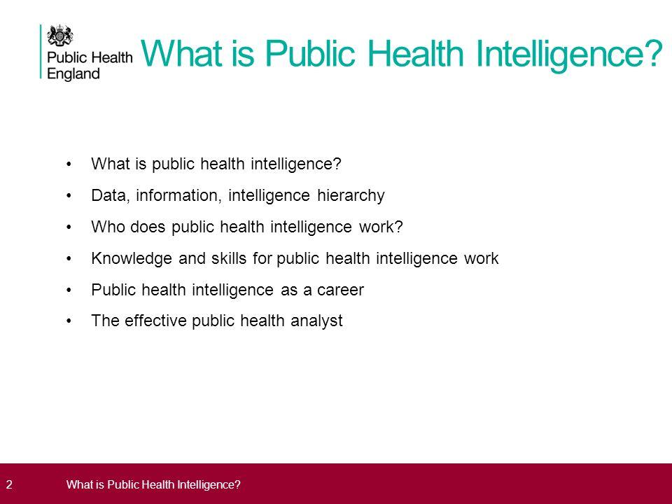 public health analyst