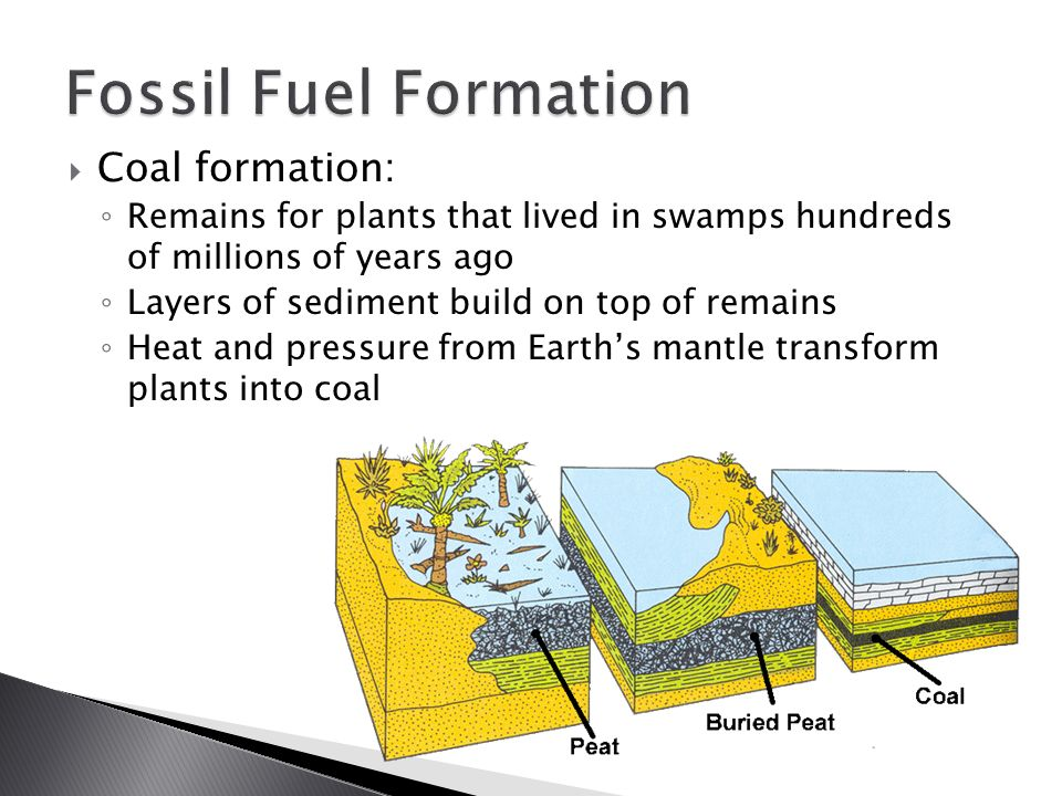 fossil fuels Fossil fuels read the latest scientific research on coal, gasoline, natural gas and diesel fuel, including fossil fuel processing.