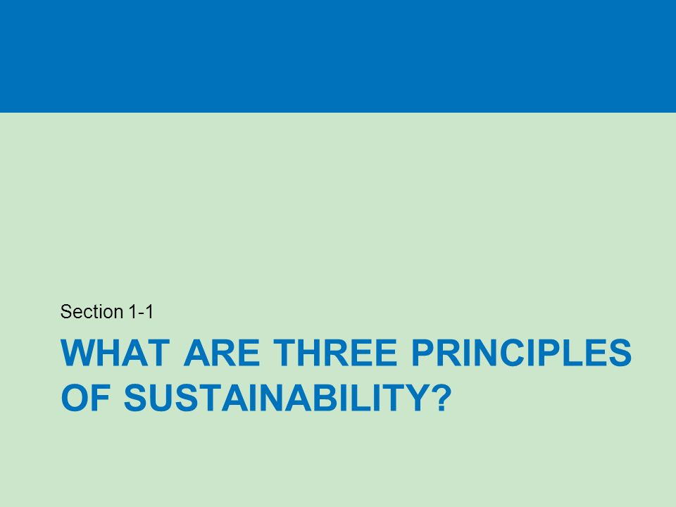 WHAT ARE THREE PRINCIPLES OF SUSTAINABILITY Section 1-1