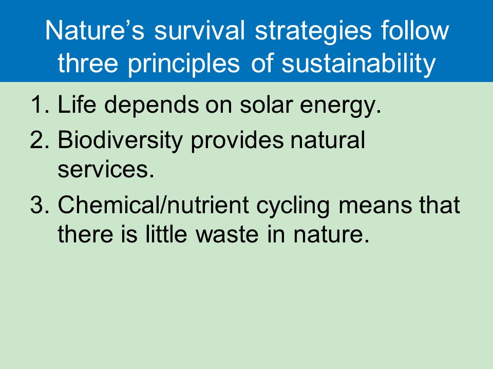 Nature's survival strategies follow three principles of sustainability 1.Life depends on solar energy.