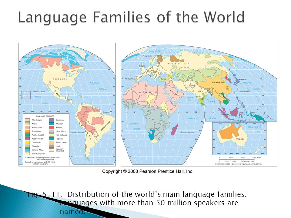Where Are Other Language Families Distributed Classification - 5 main languages of the world